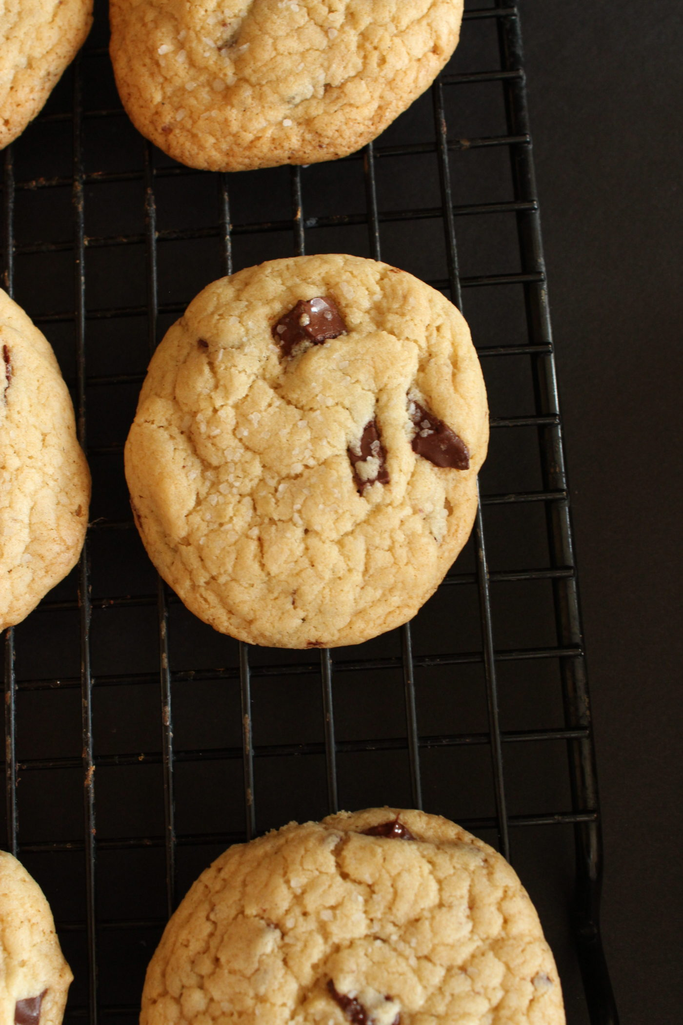Chocolate chip cookies on cooking rack.